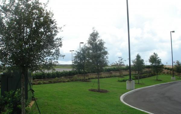 Commercial Landscape 7