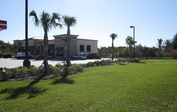Commercial Landscape 17