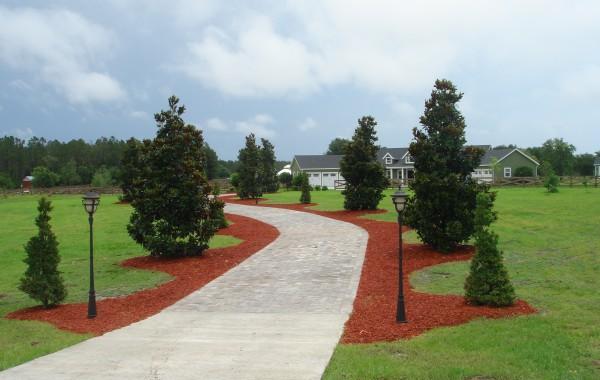 Residential Landscape 9